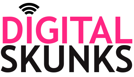 Digital Skunks, Offshore Agile Software development